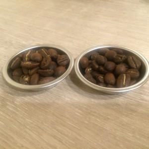 豆の外観の比較写真